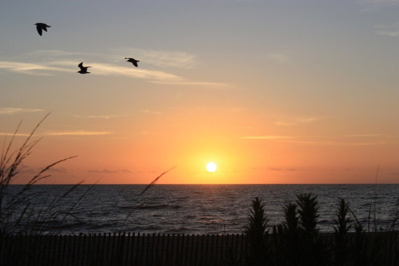 September sunrise…unedited…taken from the boardwalk...